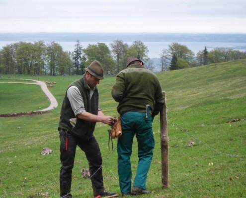 Hans und Wolfi bauen einen Zaun